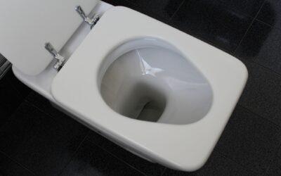Disincrostante WC